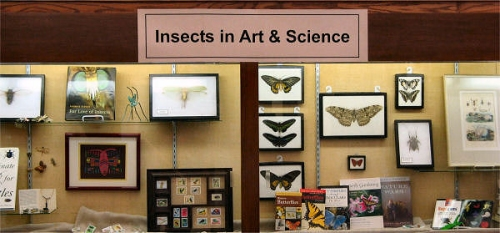 Insects in Art & Science