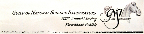 Guild of Natural Science Illustrators 2007 Annual Meeting Sketchbook Exhibit