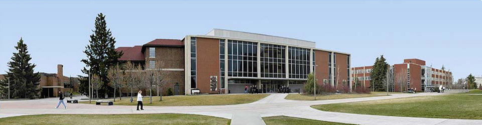 image of msu library building