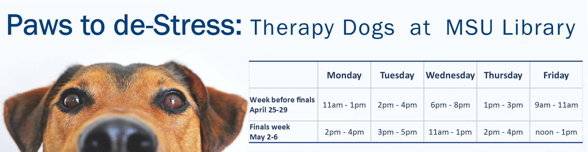 msu library paws to destress information