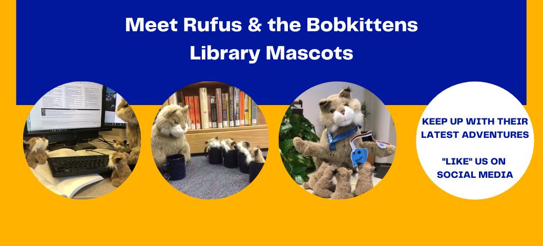 Meet Library Mascots Rufus & the Bobkittens
