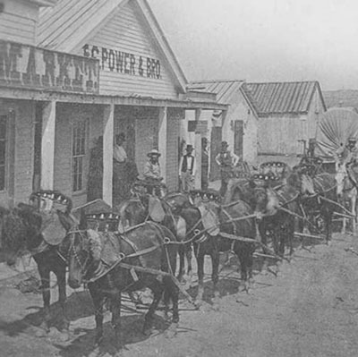 Mule Team, Fort Benton, ca. 1880