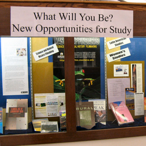 Display for Study Ops