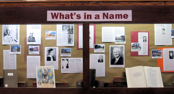 What's in a Name display
