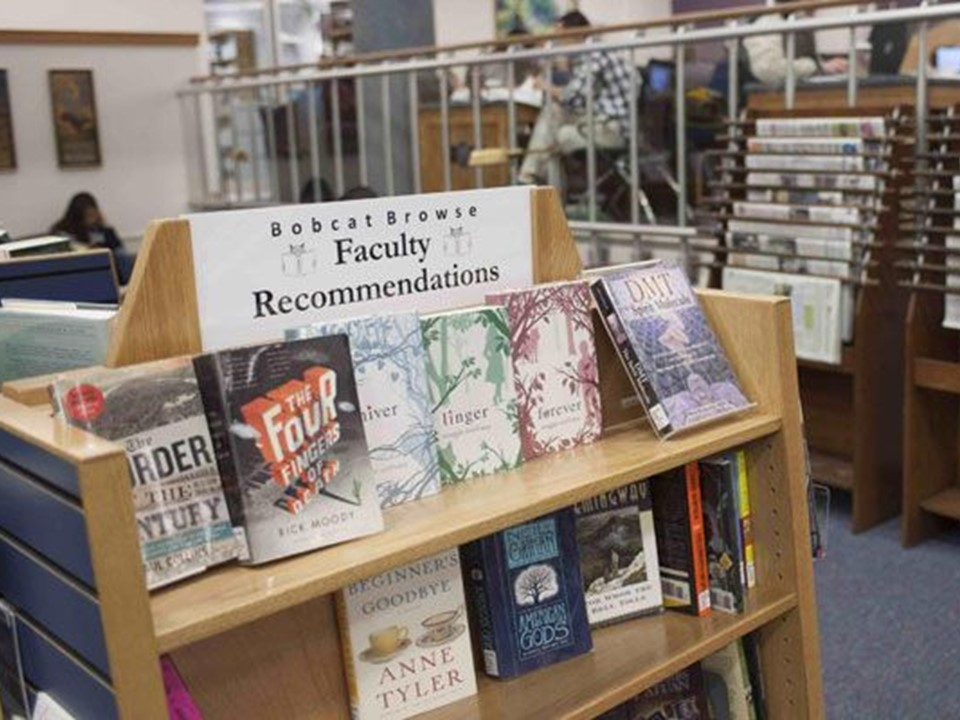 Display of faculty recommendations in the browse collection.